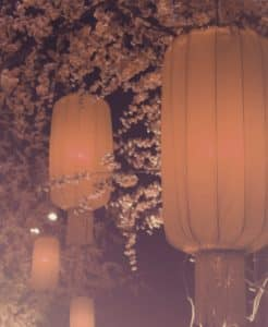 Picture of lanterns illustrating Chinese digital marketing