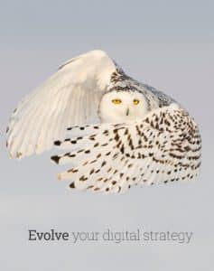 Like your digital marketing strategy, the snowy owl hunts in silence, fixated on its target