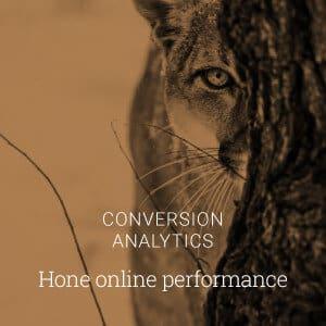 Conversion Analytics