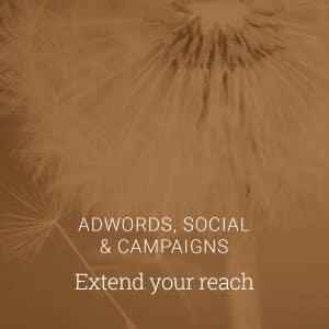 Adwords Social & Campaigns