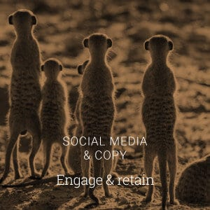 Social Media Branding & Copy
