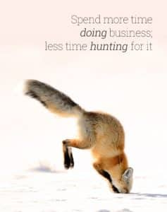 Fox diving into snow for prey illustrating how SEO Christchurch agency can attract people based on specific relevant keyword