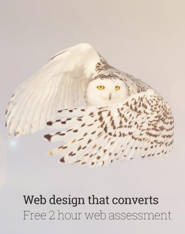 Mob Web Design Christchurch Owl Tinypng Alexanders Digital Marketing