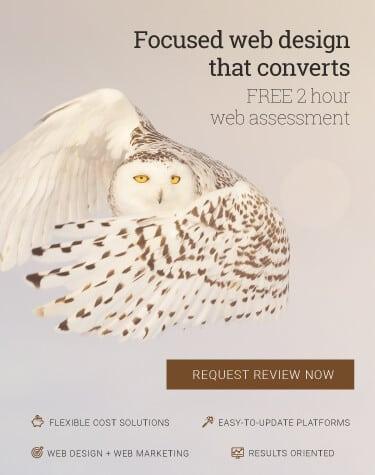Owl representing web design and development christchurch