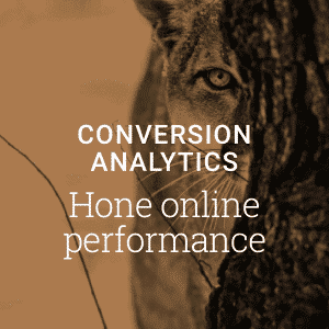 Conversion Analytics